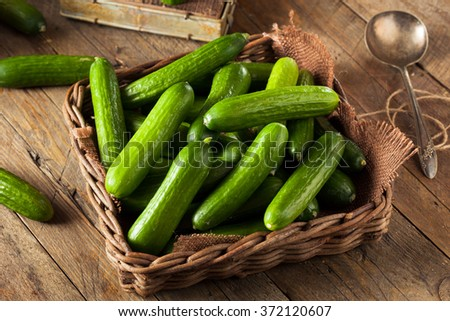 Raw Organic Mini Baby Cucumbers Ready to Eat