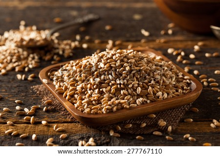 Raw Organic Spelt Grain in a Bowl - stock photo