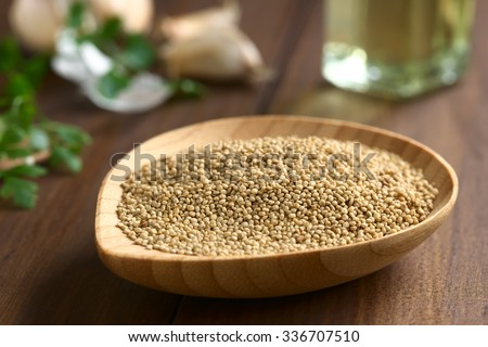 Raw organic white quinoa (lat. Chenopodium quinoa) seeds on small wooden plate, photographed on dark wood with natural light (Selective Focus, Focus one third into the quinoa seeds)