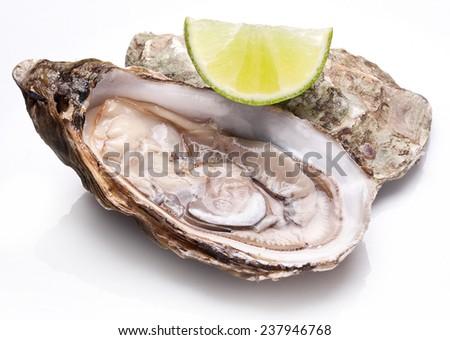 Raw oyster and lime isolated on a whte background. - stock photo