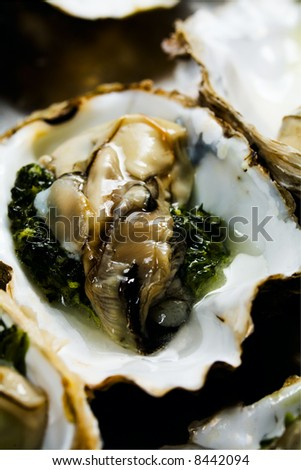 raw oyster before cooking