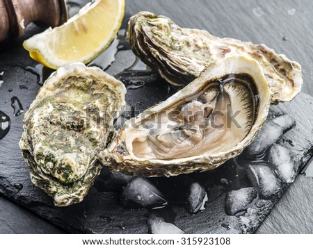 Raw oysters on the graphite board. - stock photo