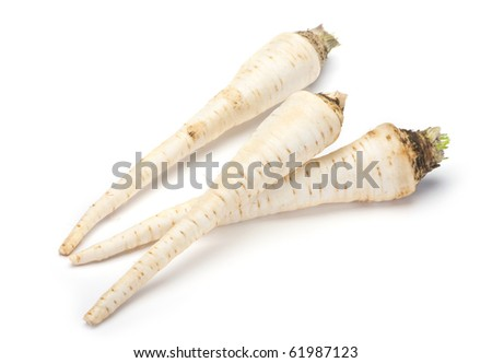 Raw parsley root closeup on white background