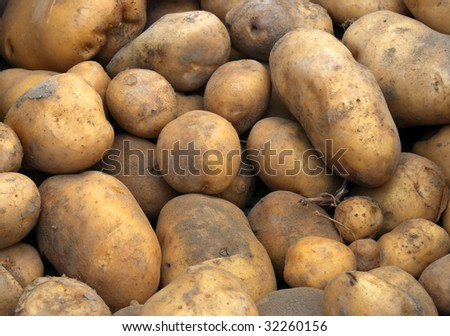 Raw potatoes at a farmers market, can be used as background