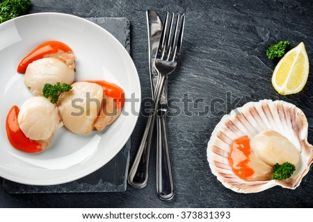 Raw queen scallops in sea food dinner concept. Food background with copy space