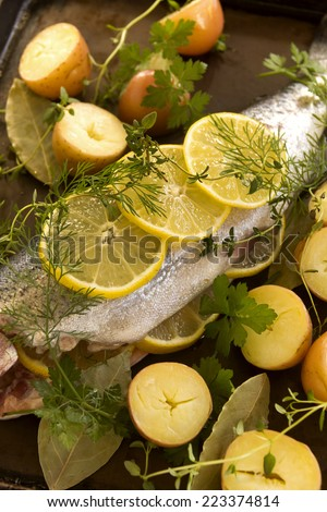Raw rainbow trout and fresh vegetables with herbs and lemon ready for the oven. - stock photo