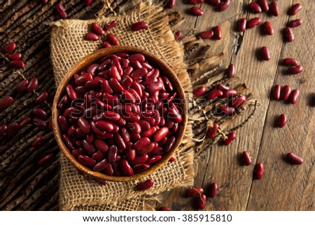 Raw Red Organic Kidney Beans in a Bowl - stock photo