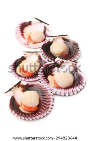 Raw scallops on white background - stock photo