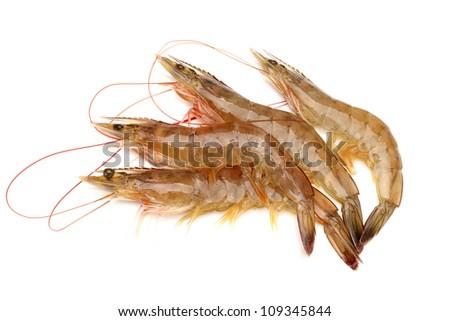 Raw shrimp isolated on white background - stock photo