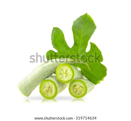 Raw snake gourd on the white background - stock photo