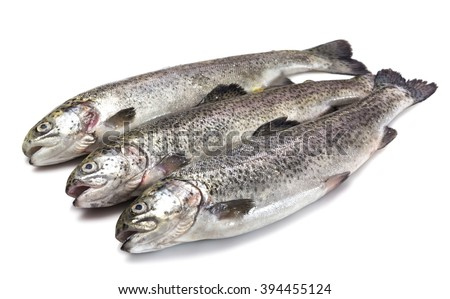 Raw trouts - stock photo