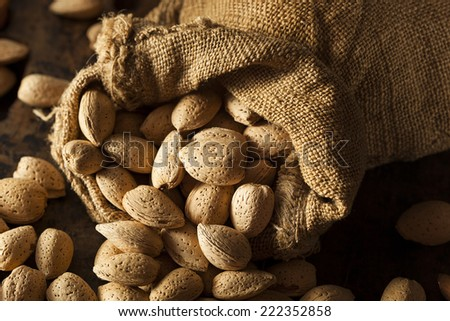 Raw Unshelled Organic Almonds on a Background