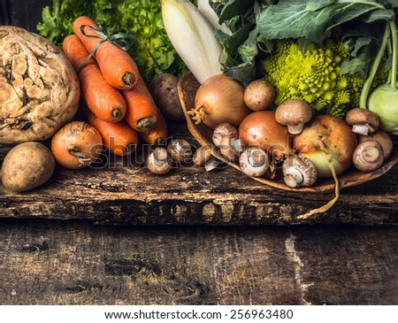 raw vegetables and edible root various on dark wooden rustic background - stock photo