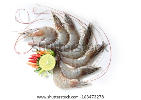 Raw white shrimp on hands in front of the aquaculture pond waiting to cook. - stock photo