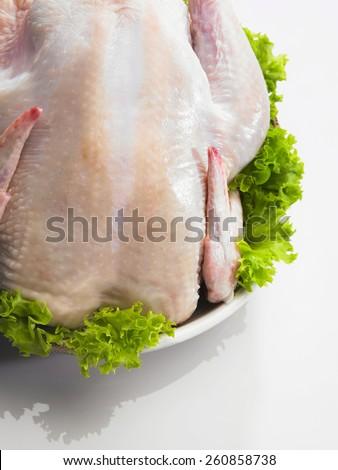 Raw whole chicken with garnishing - stock photo