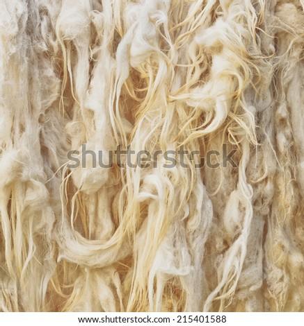 Raw wool detail - stock photo
