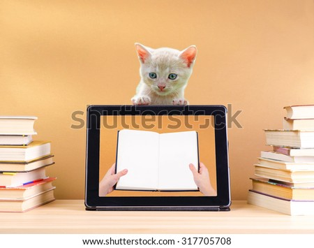 reading book in tablet pc and stack book on wooden table and little cat - stock photo
