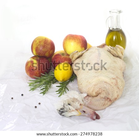 Ready to cook duck  on white paper with apples, lemons ans spices - stock photo