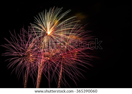 Real fireworks of various colors over night sky