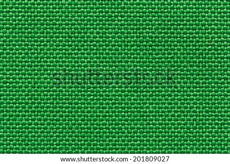 Real green textile pattern. Close-up view.