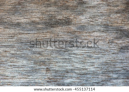Real Natural wood Texture, background closeup
