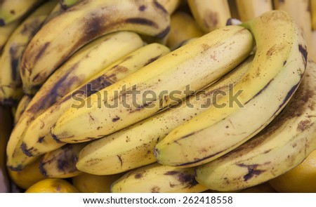 real organic ripe banana fruits at stall - stock photo