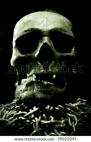 real skull with chain - stock photo