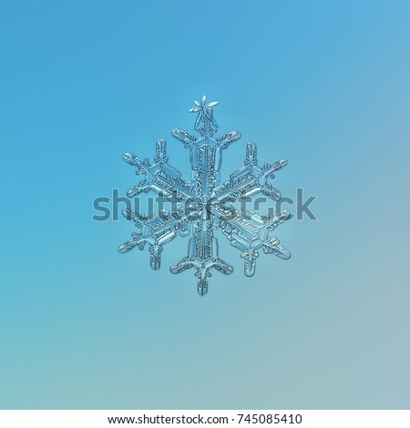 Real snowflake at high magnification: macro photo of stellar dendrite snow crystal with fine hexagonal symmetry, elegant arms and glossy surface. Snowflake glittering on light blue background.