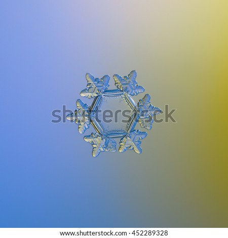Real snowflake macro photo: medium size stellar dendrite, sparkling on smooth blue / yellow gradient background. This is unusual snow crystal with large, flat and empty central hexagon and short arms.