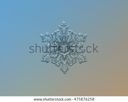 Real snowflake on bright blue-brown gradient background. This is macro photo of large stellar dendrite snow crystal with complex and elegant structure.