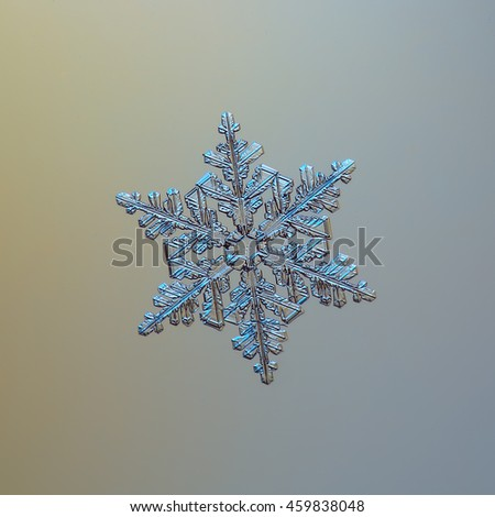 Real snowflake on smooth gradient background