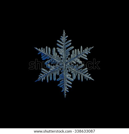 Real snowflake photo (medium size fernlike stellar dendrite crystal), isolated on black background