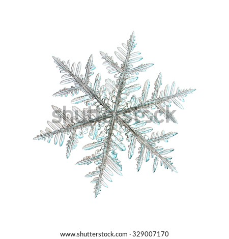 Real snowflake photo (single stellar dendrite crystal), isolated on white background