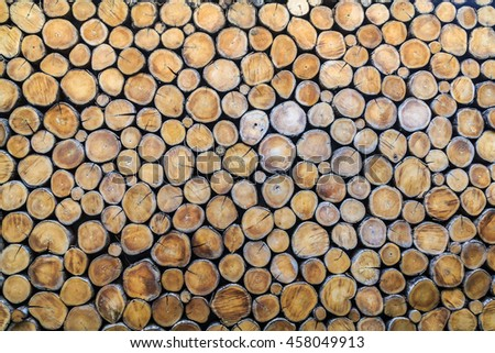 Real wood texture for decoration background.pieces of round teak wood stump background