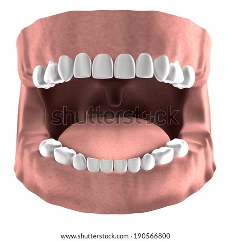 realistic 3d render of child teeth