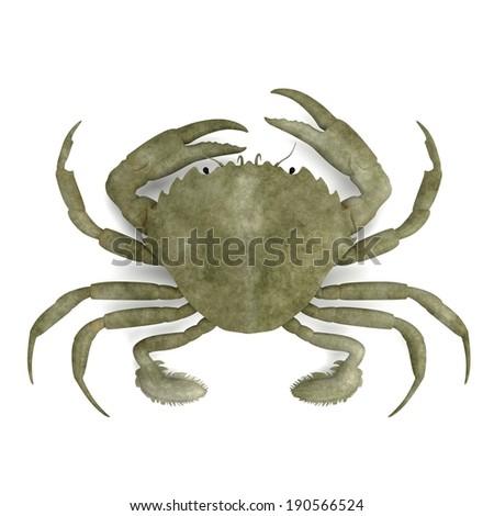 realistic 3d render of crustacean - liocarnicus vernalis - stock photo