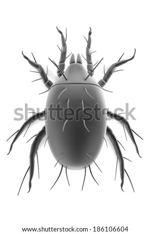 realistic 3d render of mite - stock photo