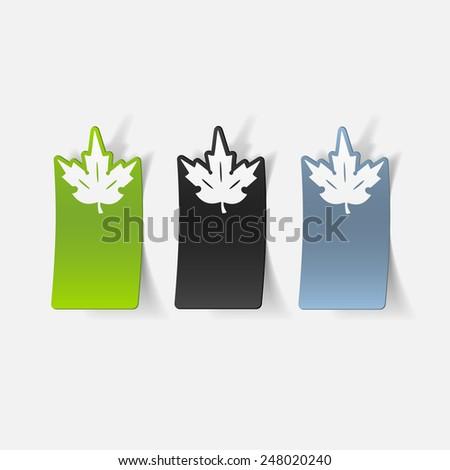 realistic design element: leaf - stock photo