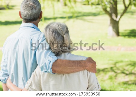 Rear view of a loving mature couple at a summer park - stock photo