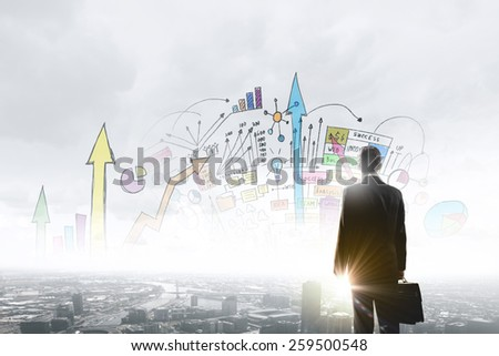 Rear view of businessman looking at business strategy sketch - stock photo