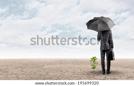 Rear view of businessman protecting little sprout with umbrella - stock photo