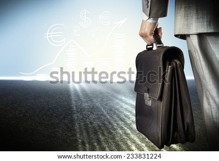 Rear view of businessman with suitcase in hand - stock photo