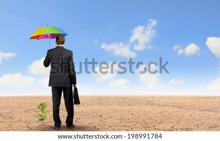 Rear view of businessman with umbrella protecting sprout - stock photo