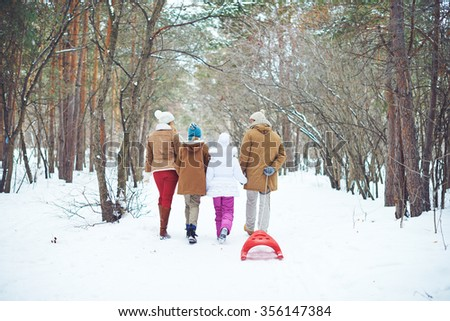 Rear view of family of four walking in the park in winter