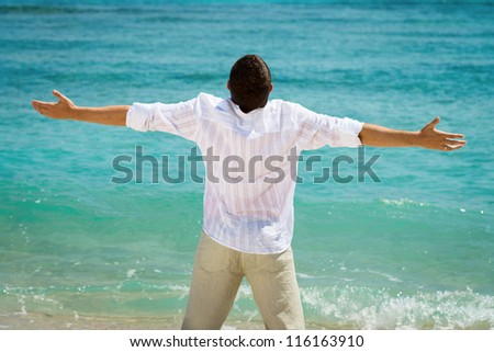 Rear view of happy man with outstretched arms on blue tropical sea - stock photo