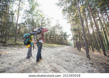 Rear view of hiking couple holding hands while walking in forest - stock photo