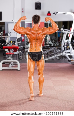 rear view of male bodybuilder posing in gym - stock photo