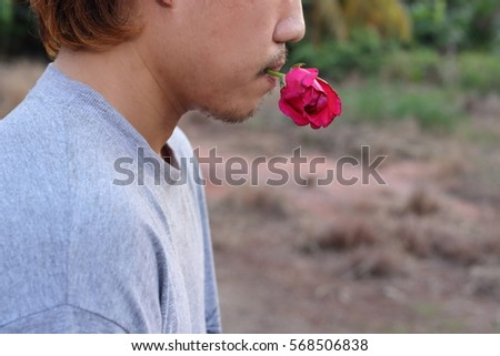 Rear view of young romantic man is holding a red rose in his mouth on nature blurred background. Love and romance Valentine's day concept.