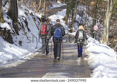 Rear view on mountaineers while walking in the snow forest - stock photo