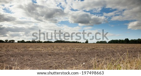 Recently cultivated harvested field with blue skies and clouds